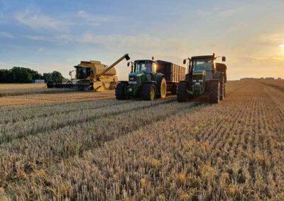 Landwirtschaft auf dem Liethshof